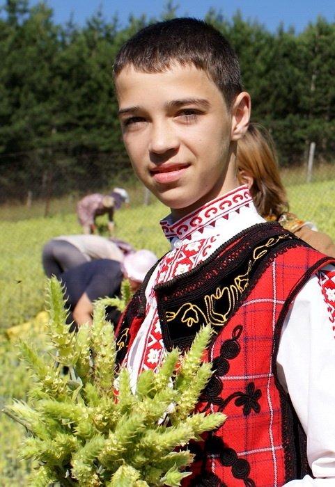 Jeune tenant un bouquet de tisane