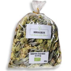 thé des montagnes sideritis scardica